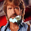 Shave Chuck Norris